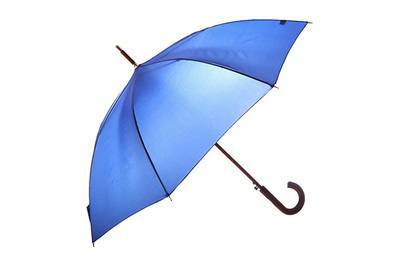 e03fb7c207ad Totes Blue Line Auto Wooden Stick Umbrella