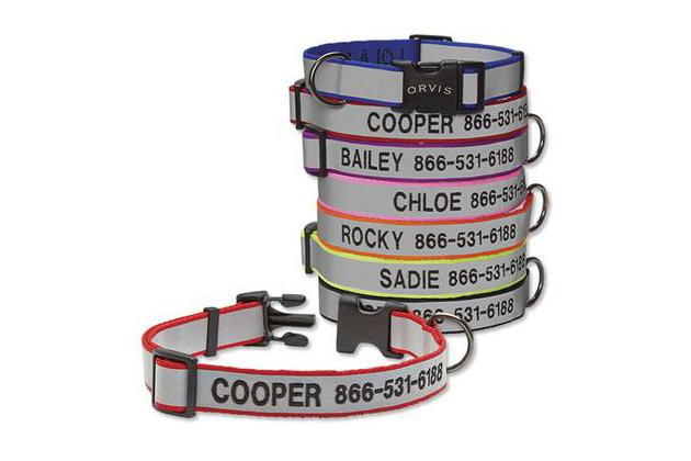 Orvis Personalized Reflective Collar