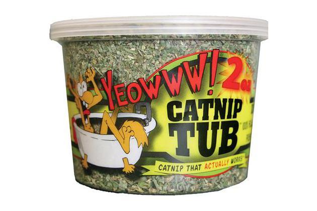 Yeowww Catnip