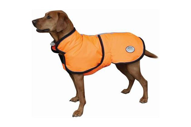 a0d2a730e312 The Best Winter Jackets and Raincoats for Dogs: Reviews by ...