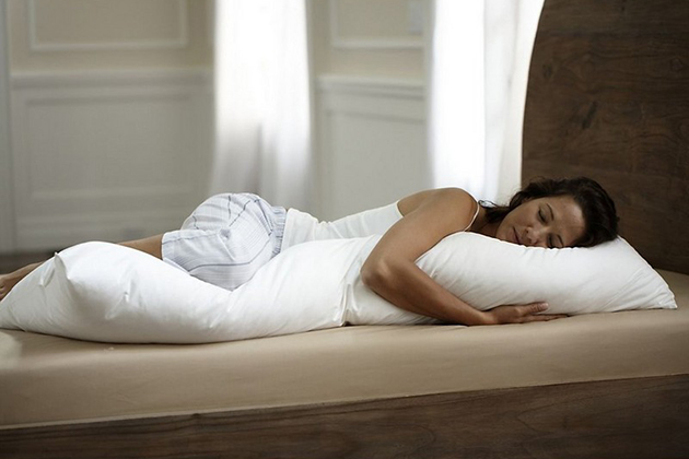 The Company Store Body Pillow Cover