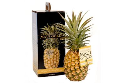 Maui Gold Single-Pack