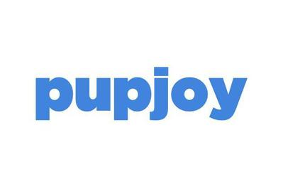 PupJoy Power Chewers Box