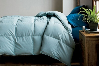 The Company Store Alberta Euro Down Comforter