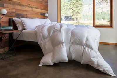 Feathered Friends Bavarian Medium 700 Down Comforter