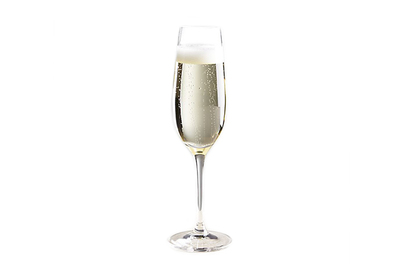 Crate and Barrel Viv Champagne Glass